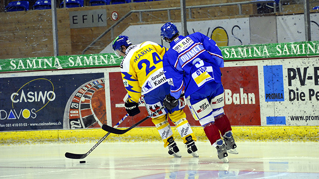 Eishockeyspieler | (c) unbekannt