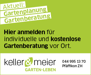 Half Page 1 Keller Meier Gartengestlatung