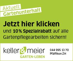 Half Page 2 Keller Meier Gartengestaltung