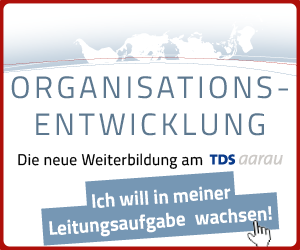 Organisationsentwicklung | Mobile Rectangle