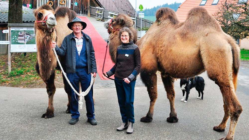 Hansueli und Annekäthi Grädel mit Kamelen