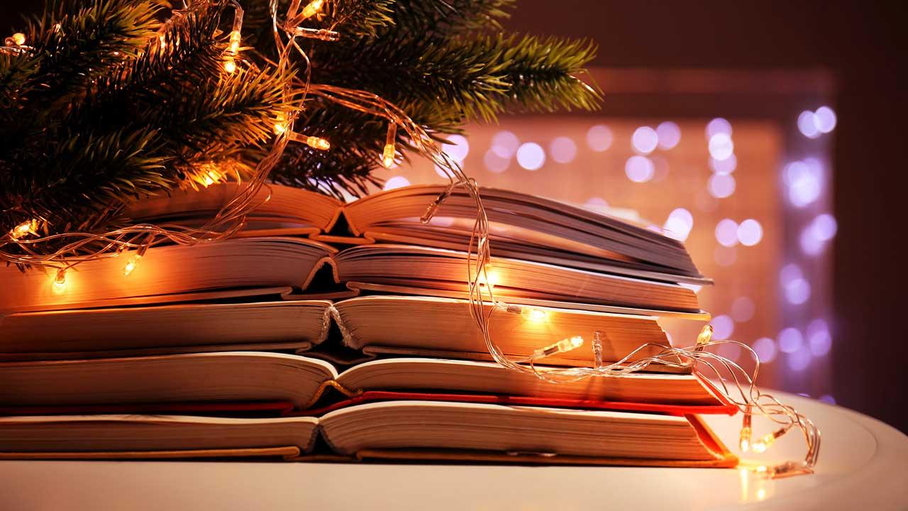 Bücher mit Lämpchen vor einem Nadelbaum