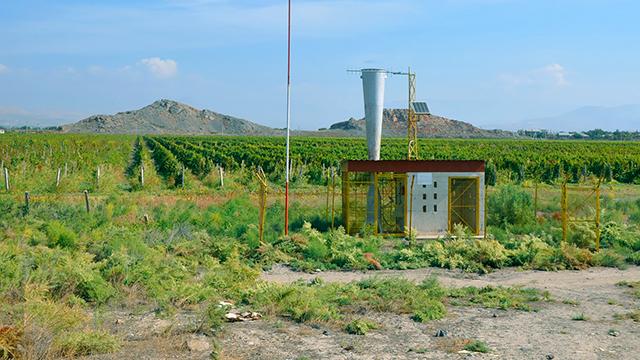 Weinreben in Lusarat (c) 123rf