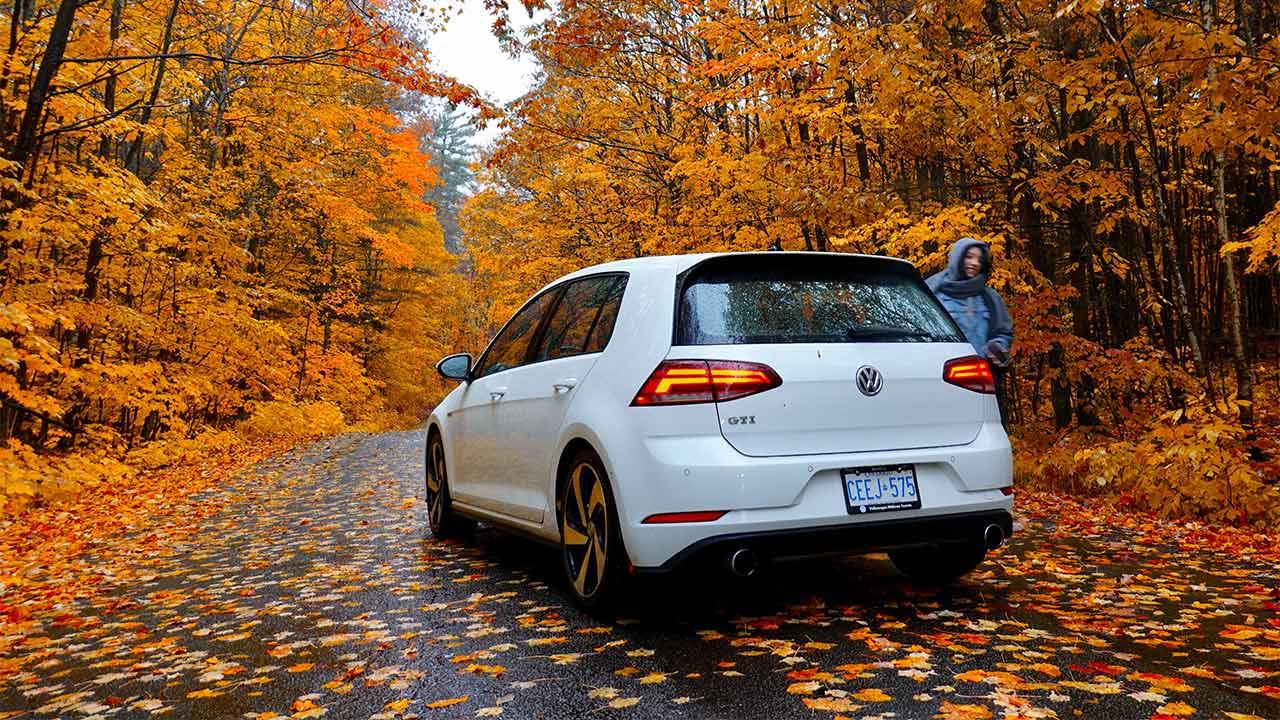 Im Herbst hat es oft Laub auf der Strasse. | (c) unsplash