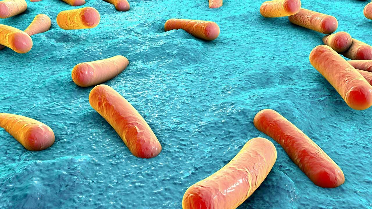 Bakterien auf Hautoberfläche