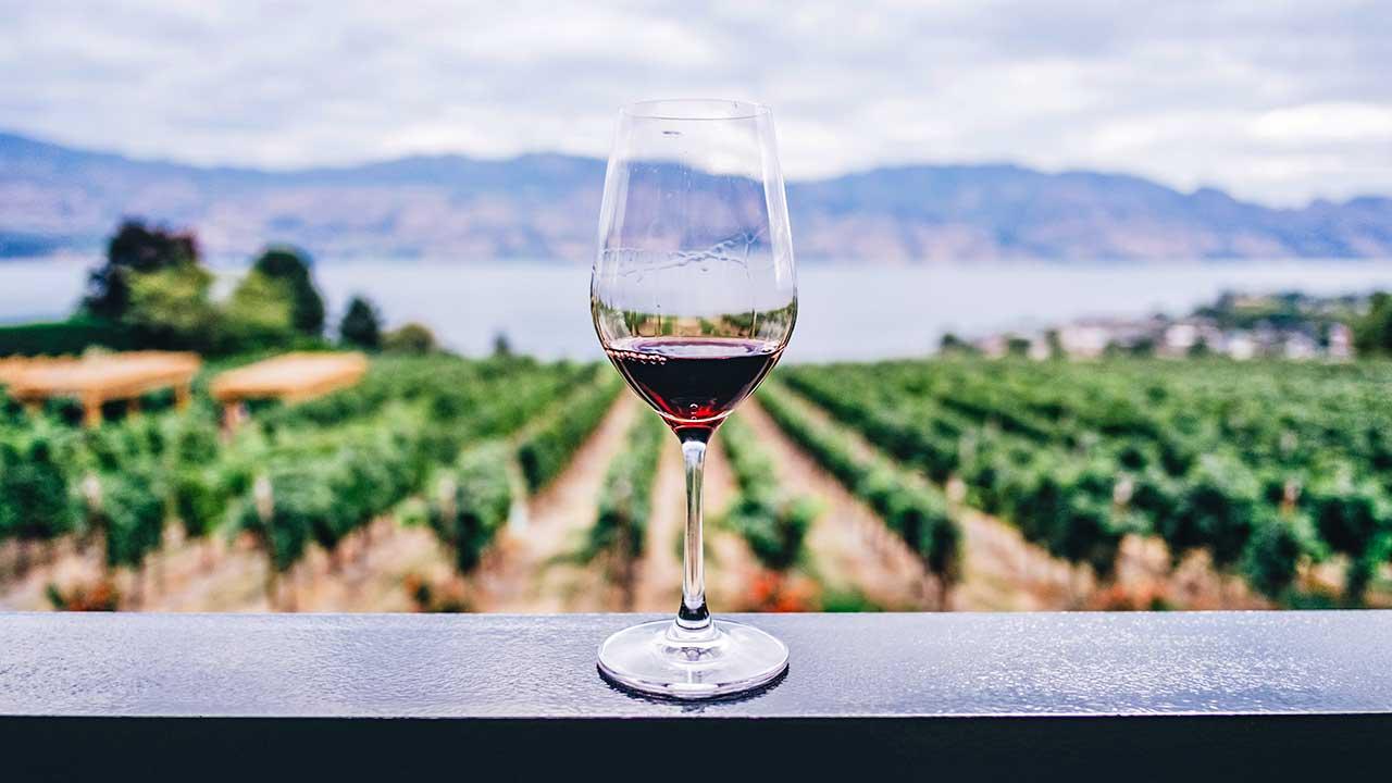 Weinglas auf einem Balkon, mit Blick auf einen Weinberg und einen See