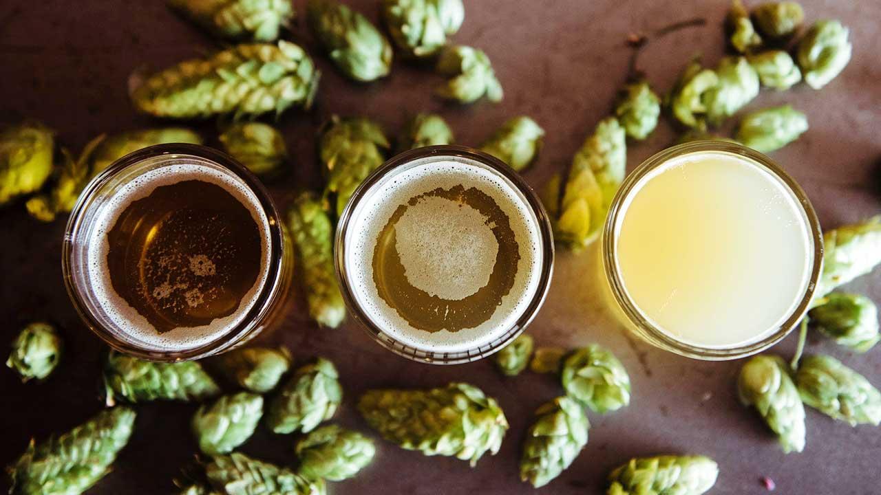 Drei verschiedene Biersorten mit Hopfen