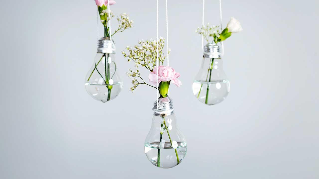 Blumen in aufgehängten Glühbirnen als Kreativität