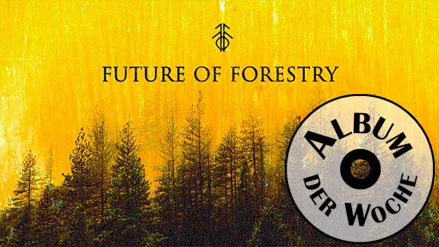 «Light Has Come: Christmas» von Future of Forestry