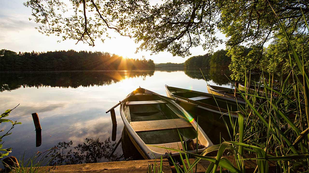 Seeufer im Wald mit Booten