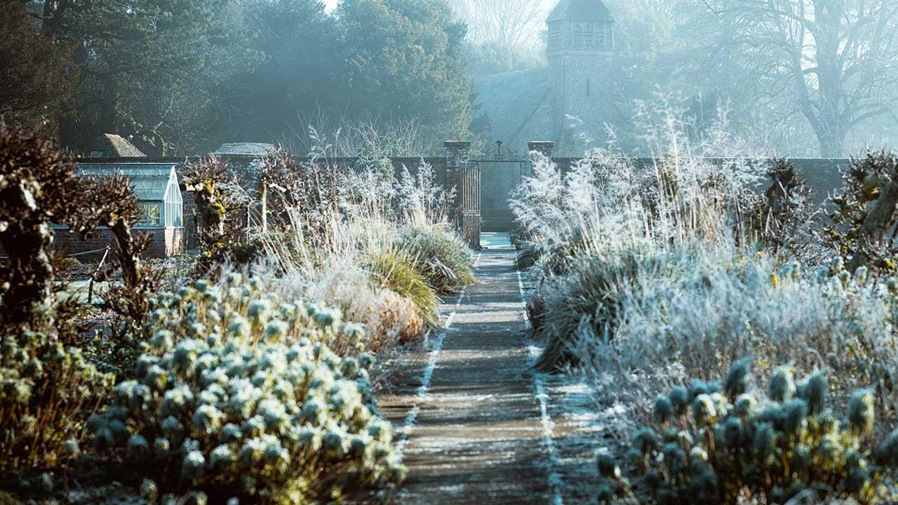 Winterlicher Garten von Hinton Ampner in Alresford, England