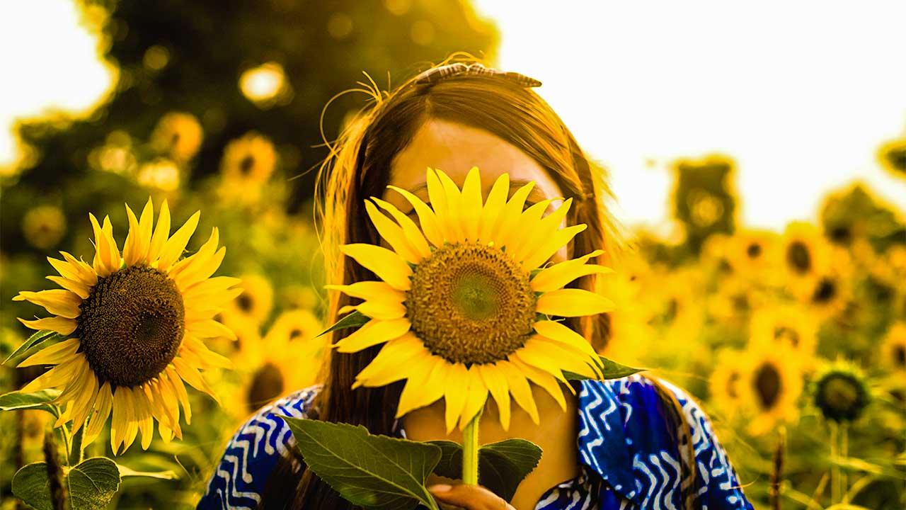 Gesicht einer Frau hinter einer Sonnenblume