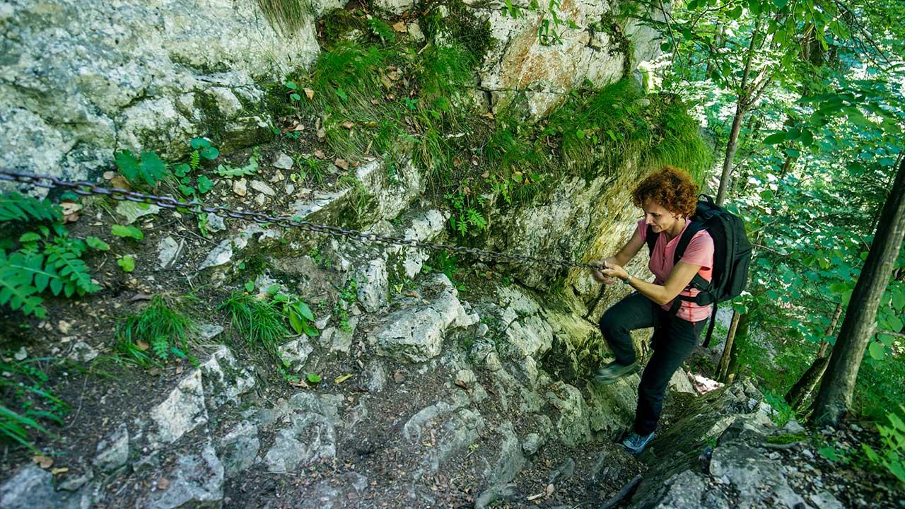 Frau hält sich an Sicherheitskette, um einem Klettersteig im Wald emporzulaufen