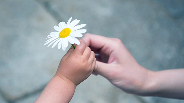 Eine Blume für Mutter (c) 123rf