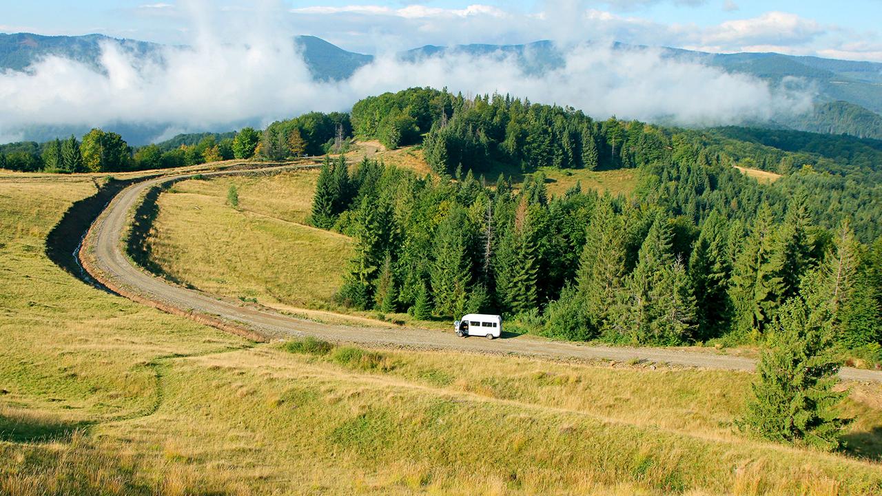 Bus am Waldrand