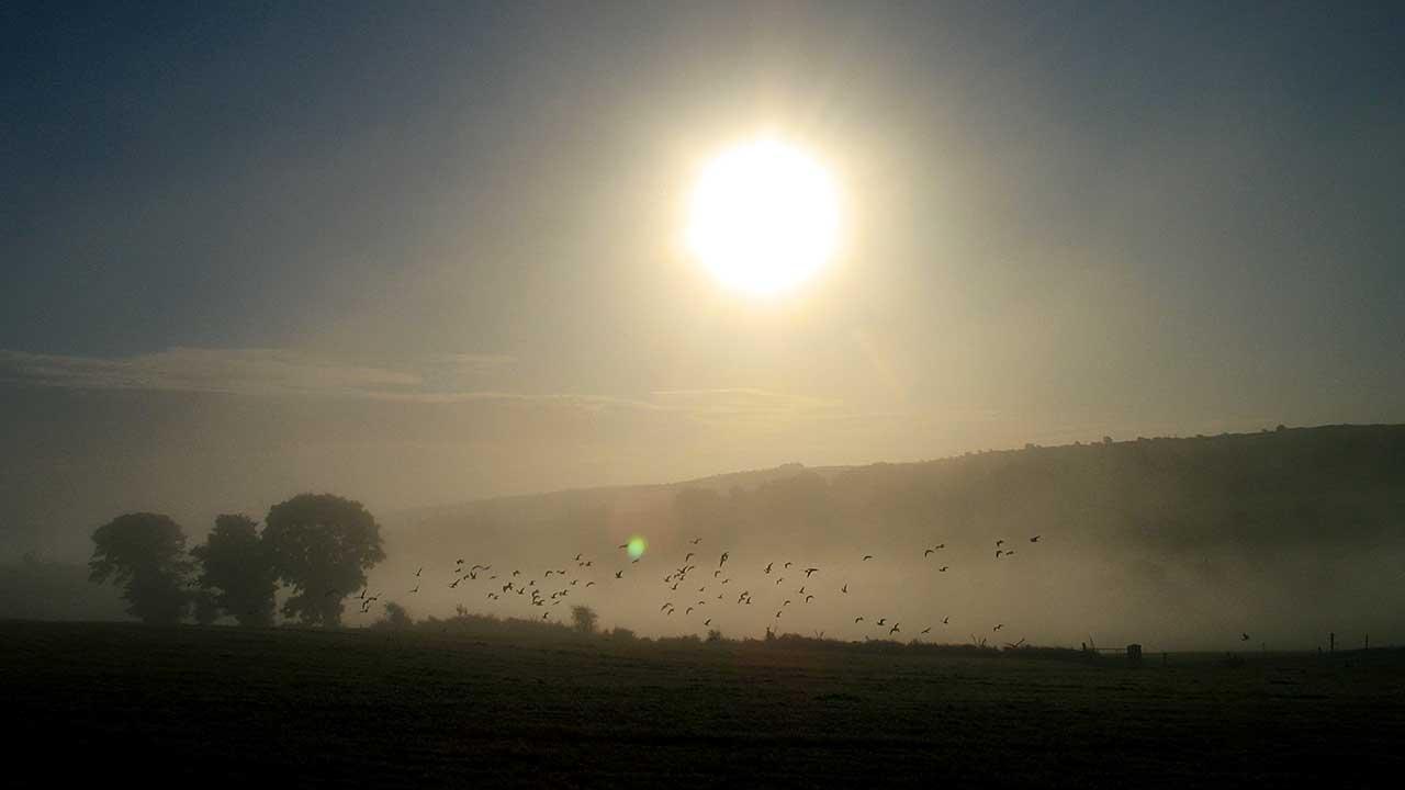 Neblige Landschaft mit Sonne im Cork-County in Irland