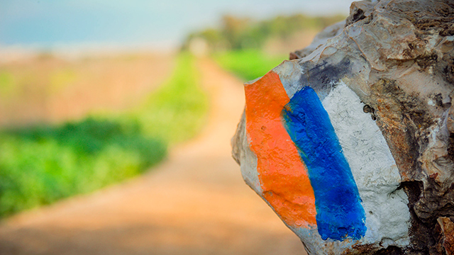 «Israel National Trail»