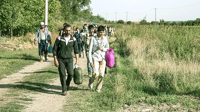 Flüchtlinge überqueren die Grenze Serbien–Kroatien bei Tovarnik, 2015