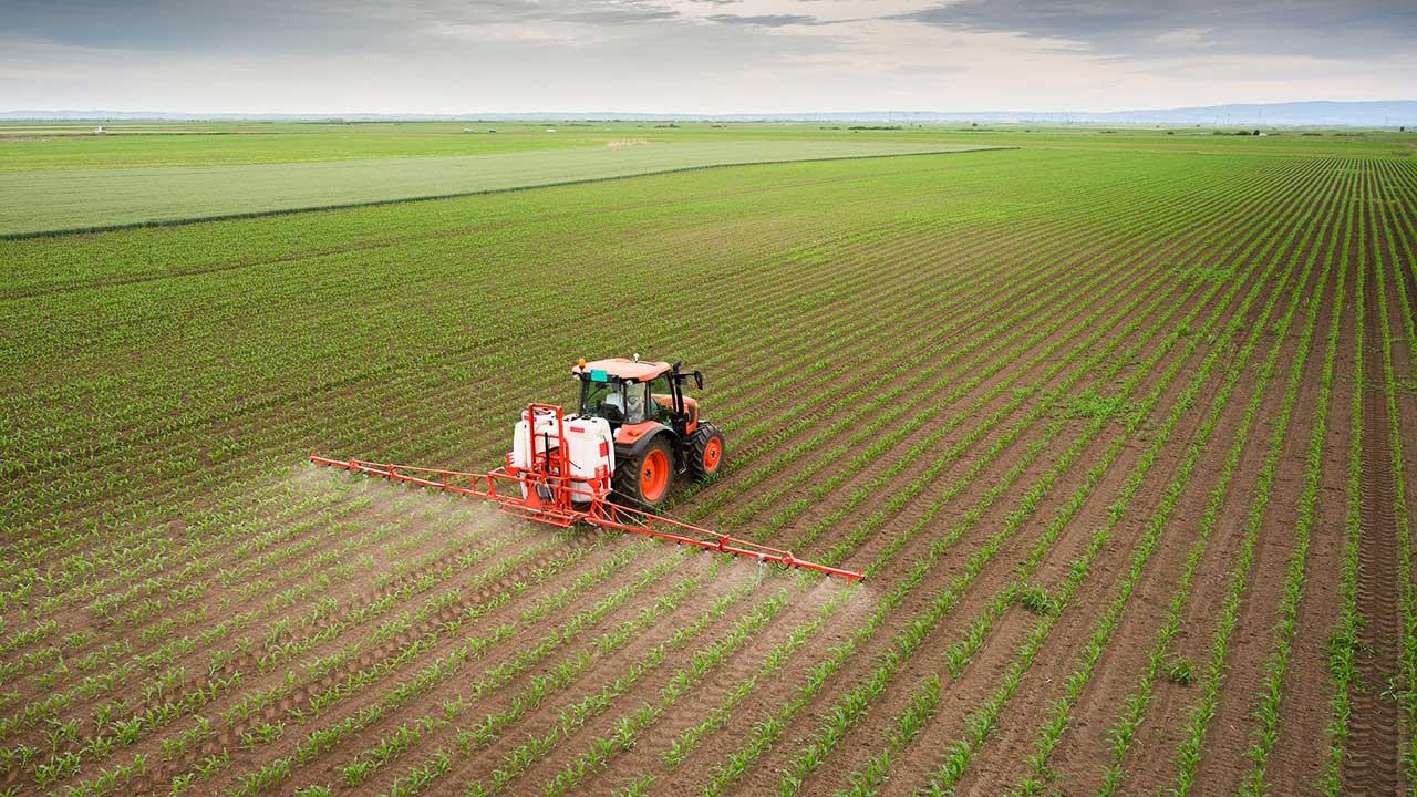 Traktor sprüht auf einem Feld Pestizid