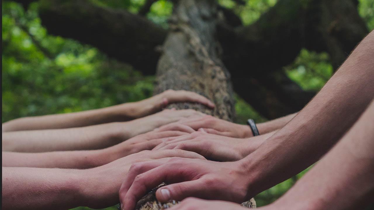 Miteinander Kirche sein und gleiche Rechte ausüben | (c) unsplash