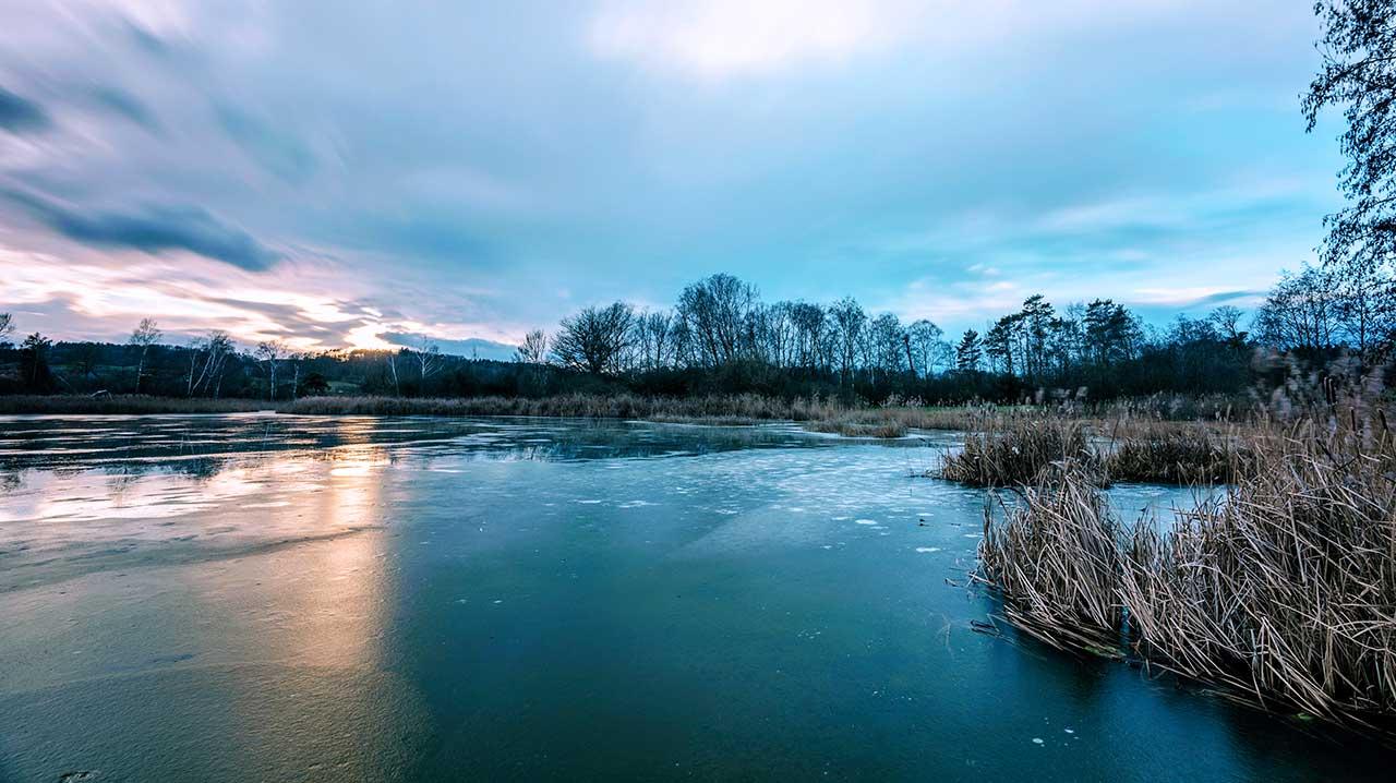 Winterstille an einem See in Nussbaumen
