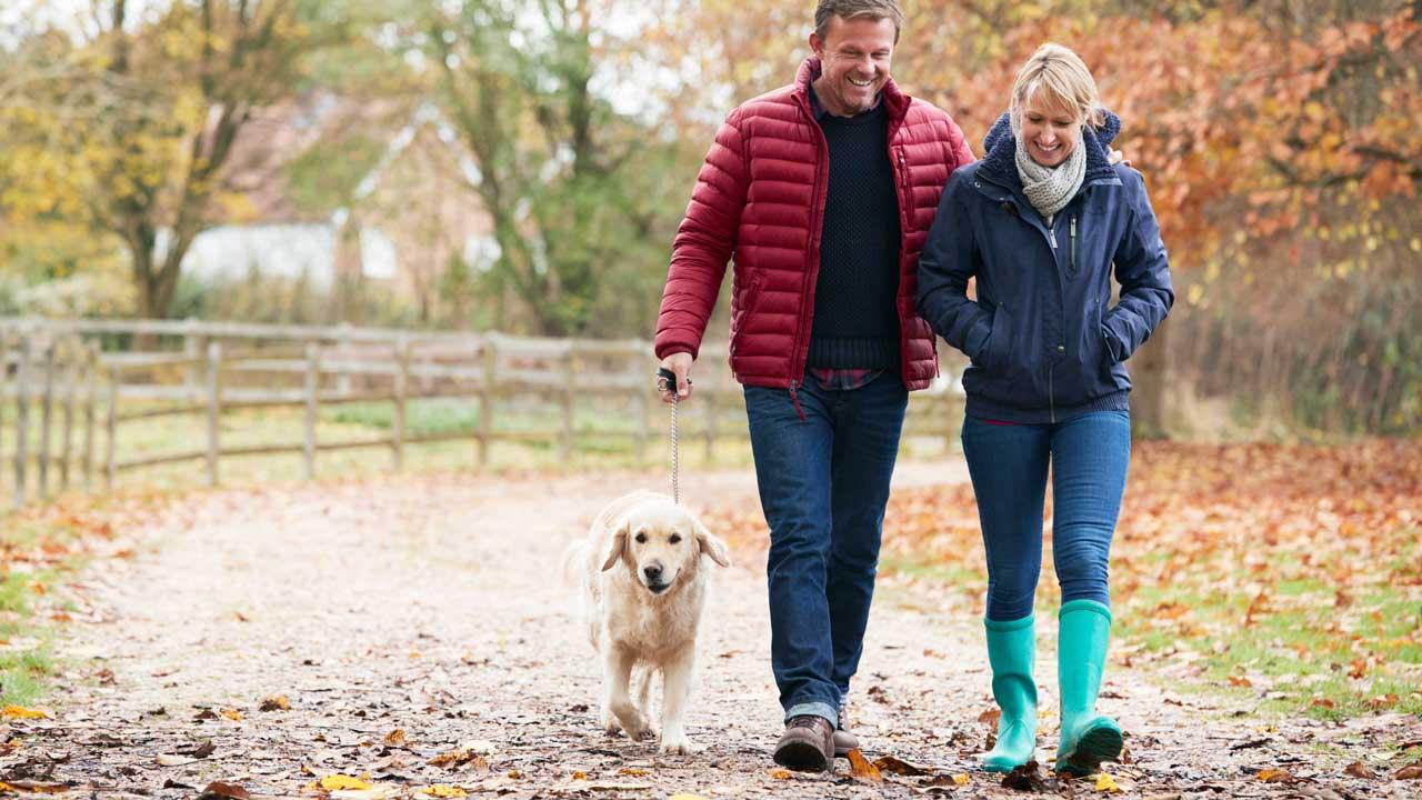 Paar spaziert mit ihrem Hund im Herbst