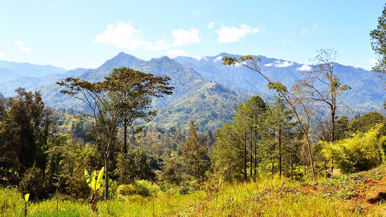 Im Hochland von Papua-Neuguinea
