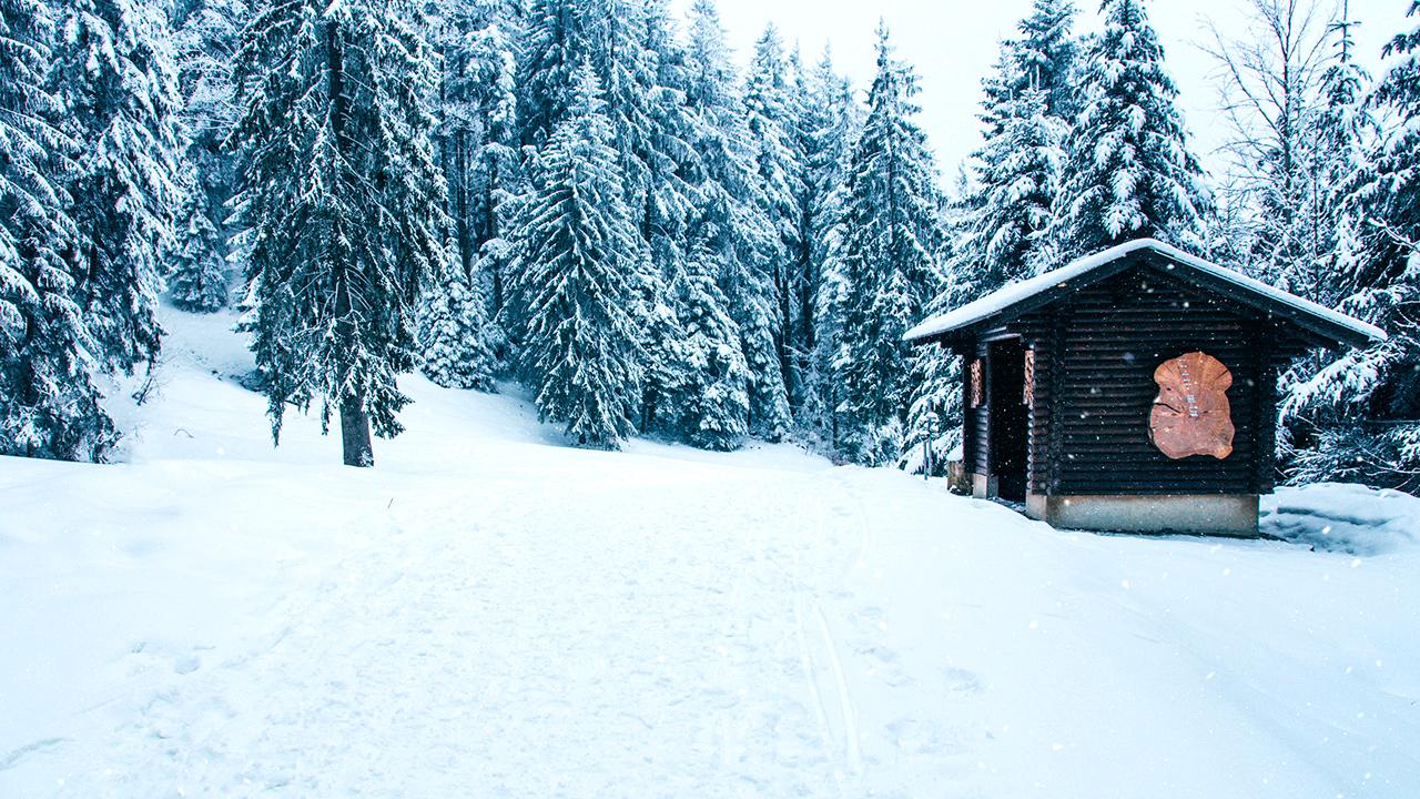 Schnee in der Sattel-Region, Schwyz