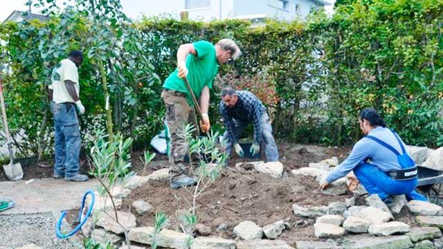 Angestellte der Shelter Gartenbau in Aktion