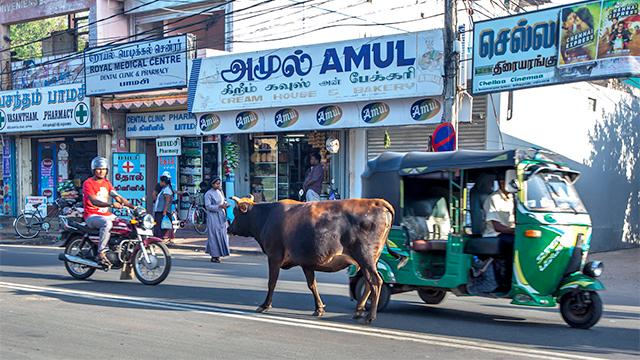 Strassenszene in Jaffna, Sri Lanka