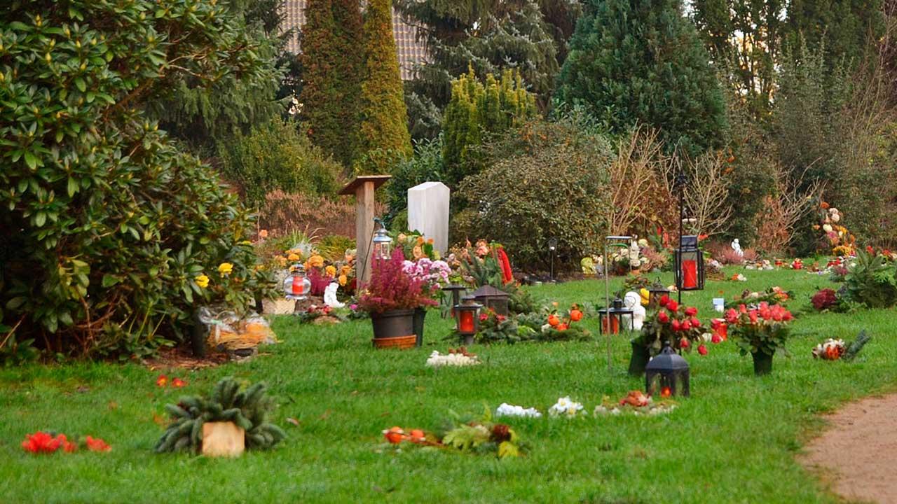 geschmücktes Rasenurnenfeld eines Friedhofs am Totensonntag