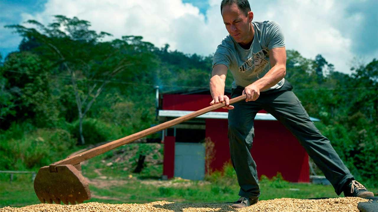 Thomas Schwegler beim Trocknen von Kaffeebohnen | (c) Tropical Mountains