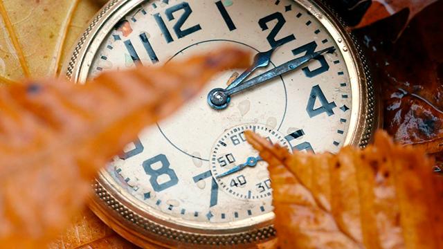 Uhr im Herbstlaub