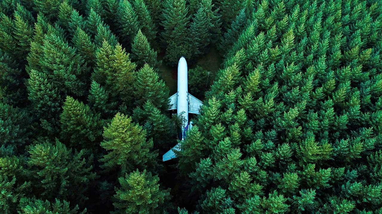 Flugzeug mitten im Wald