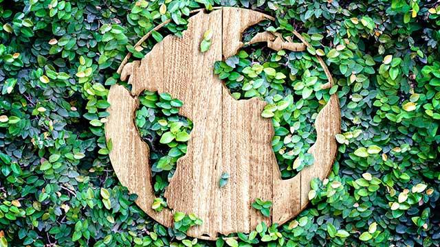 Holzschablone - Nachhaltigkeit im Grünen