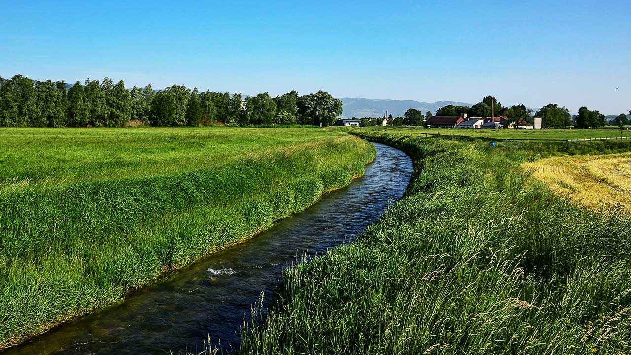 Bach fliesst durch eine Landschaft, im Hintergrund ein Bauernhof