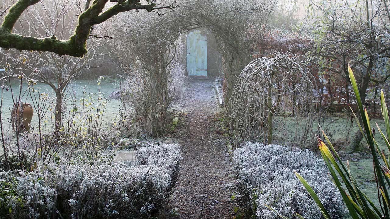 Wintergarten mit Frost | (c) 123rf