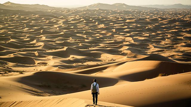 Vor sich die Wüste