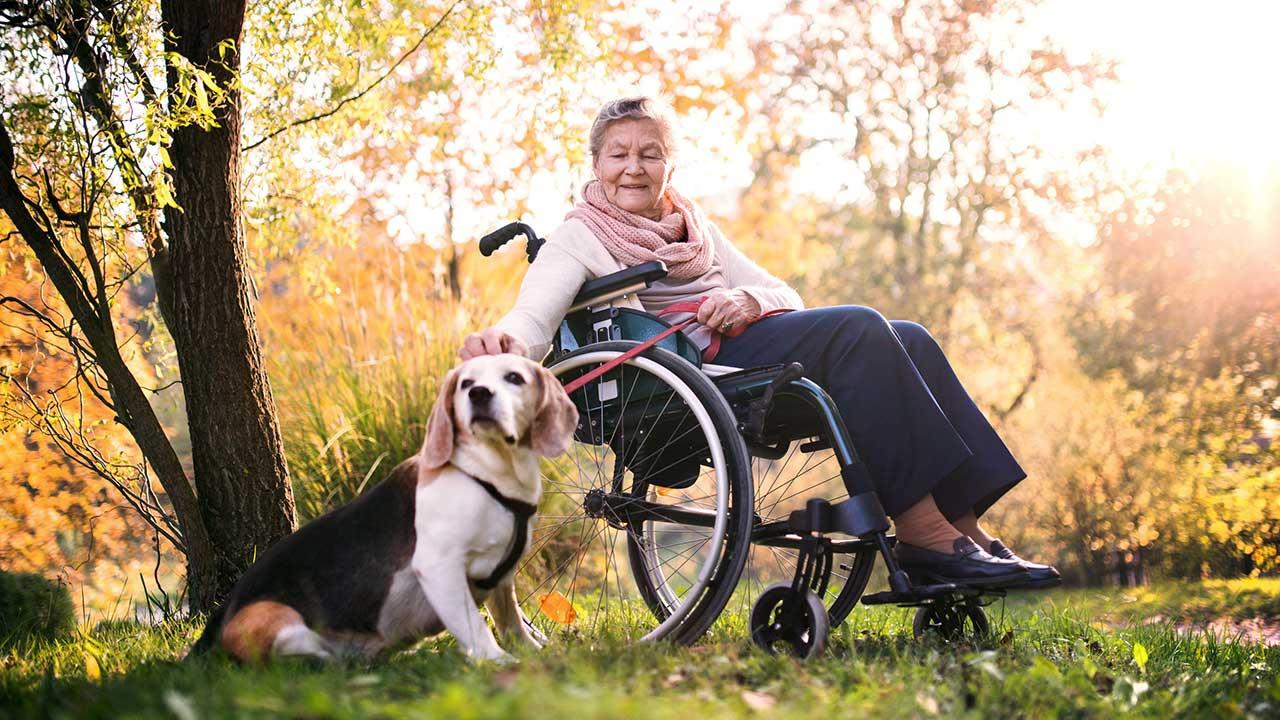 Frau im Rollstuhl geniesst mit ihrem Hund den Herbst
