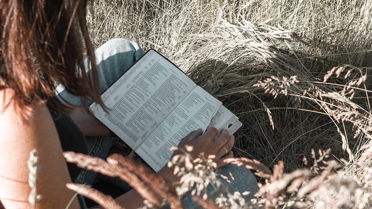 Junge Frau liest die Bibel sitzend in einem Feld