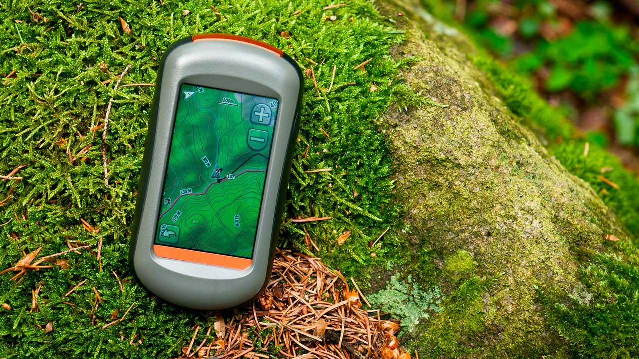Smartphone im Wald