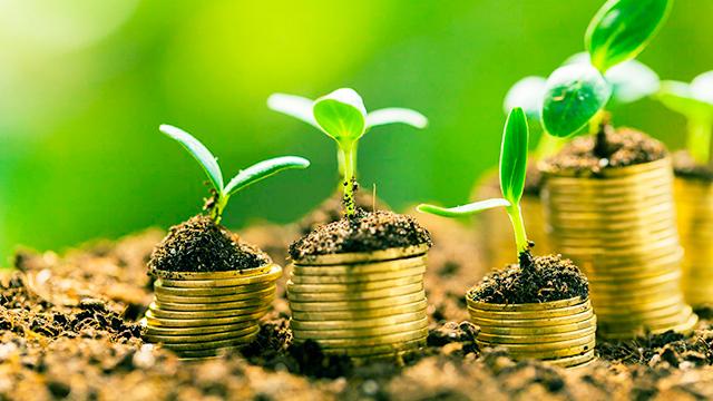 Geld in Wachstümliches investieren