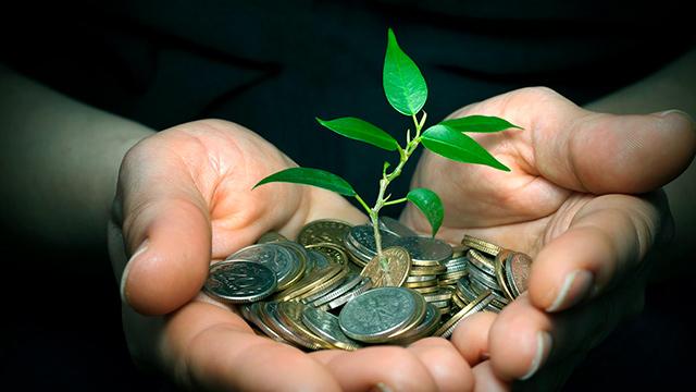 Investition in Wachstum