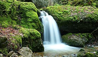 Wasser erfrischt - auch im Sommer