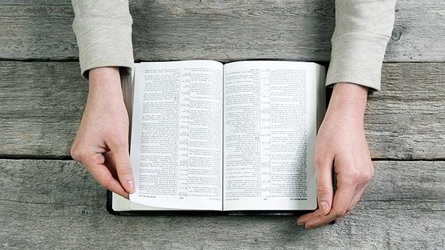 Bibellektüre