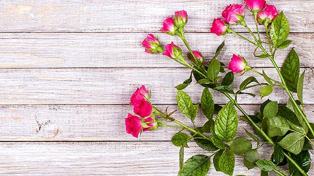 Trockenes Holz, frische Rosen