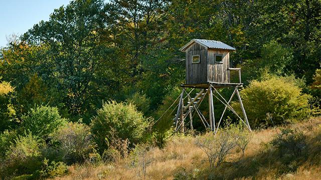 Jagdhaus beim Wald