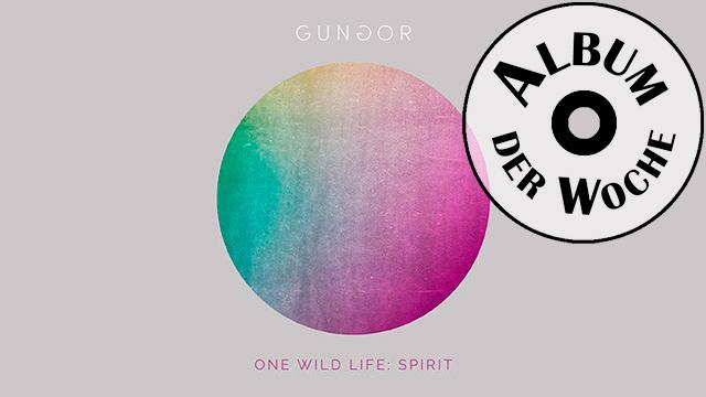 «One Wild Life» von Gungor