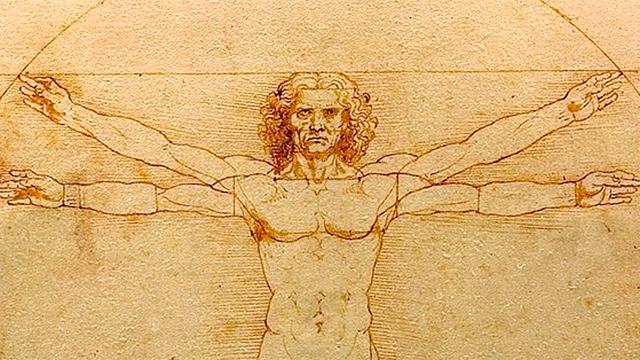 «Der vitruvianische Mensch» von Leonardo da Vinci
