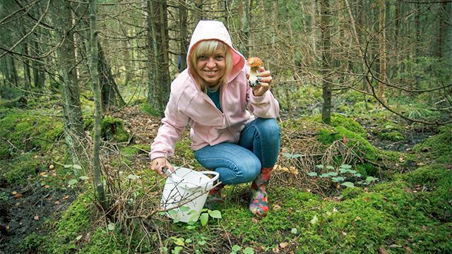 Frau sammelt Pilze